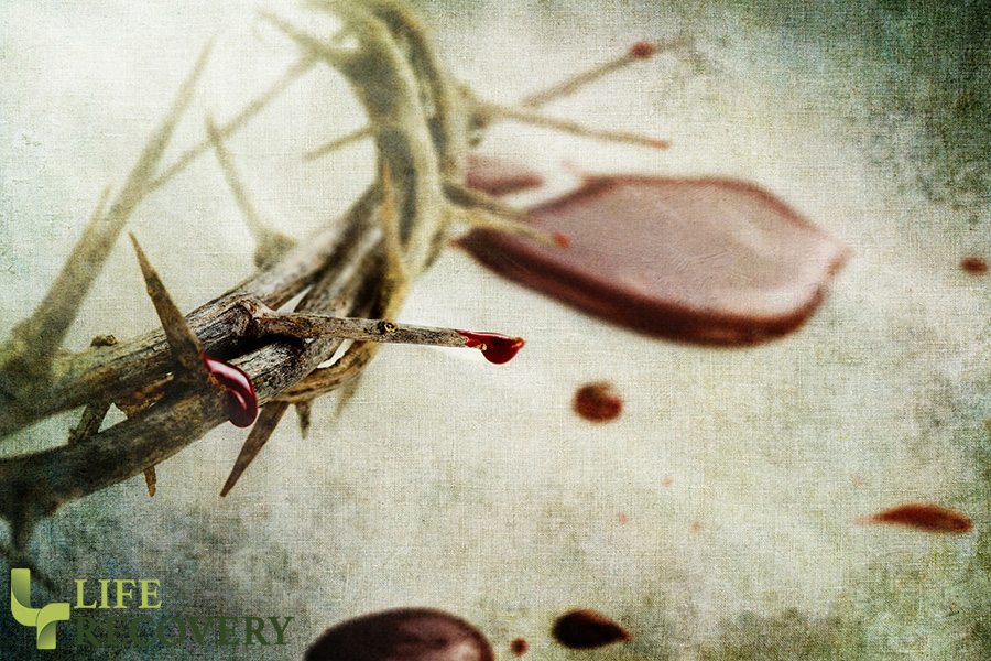 more-than-blood-lrg